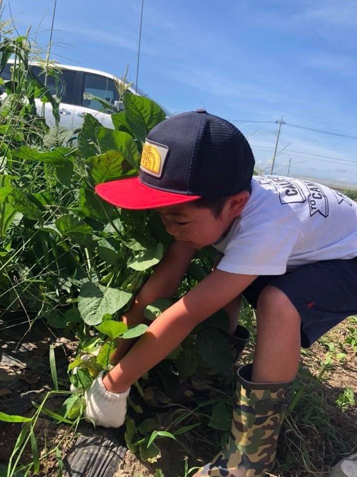 18.7.1農業体験4